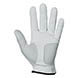 ALL WEATHER GLOVE,